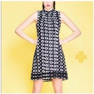 Sachin + Babi Marzena Daisy mini dress.